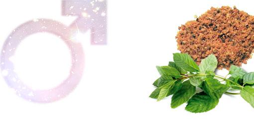 火星香熏与星座